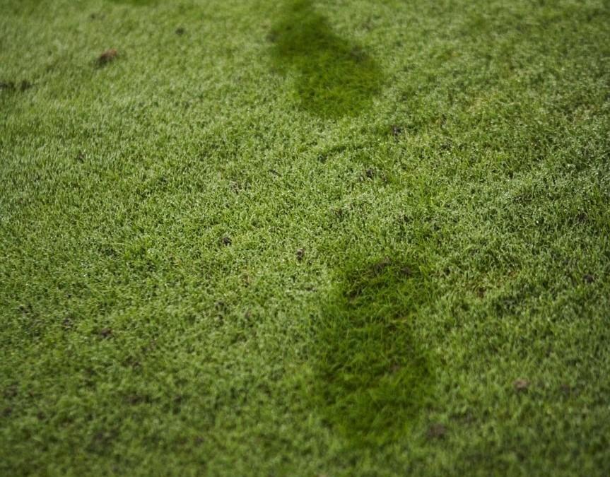 Informasjon om drift av golfanlegget på Myhrene Gård, hva bringer fremtiden ?